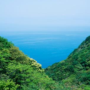 国道17号から望む駿河湾の写真素材 [FYI03353957]