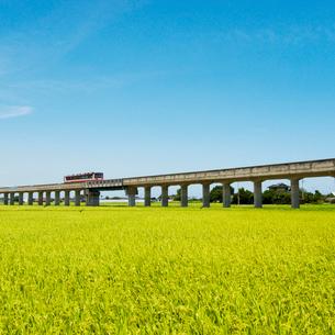 田園を走るレールバス 鹿島鉄道の写真素材 [FYI03353973]