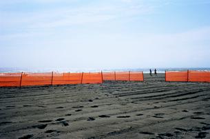 鵠沼海岸ビーチバレー場のオレンジ色のネットの写真素材 [FYI03353990]