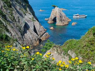キクイモの咲く浦富海岸と観光船の写真素材 [FYI03354205]