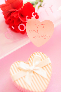 母の日のプレゼントとカーネーションの写真素材 [FYI03354763]