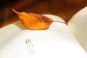 開いた本と枯葉の写真素材 [FYI03354814]