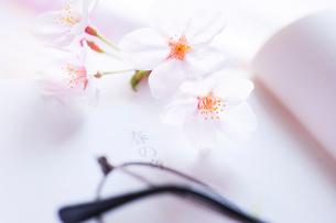 春の章の頁を開いた本と桜の花と眼鏡の写真素材 [FYI03354826]