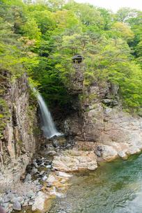 若葉の龍王峡虹見の滝と鬼怒川の写真素材 [FYI03354991]
