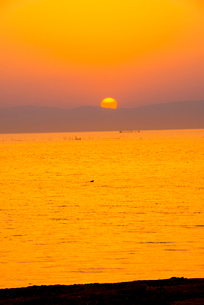 豊公園より琵琶湖の夕日の写真素材 [FYI03355610]