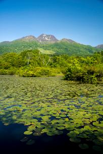 いもり池と妙高山の写真素材 [FYI03355636]