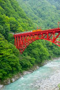 新山彦橋を渡る黒部渓谷トロッコ電車の写真素材 [FYI03355661]