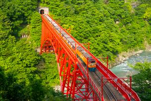 新山彦橋を渡る黒部渓谷トロッコ電車の写真素材 [FYI03355695]