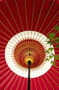 和傘とモミジの写真素材 [FYI03356169]