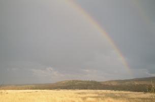 虹の架かる湿原風景の写真素材 [FYI03356248]