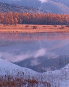 秋の小田代ヶ原の風景 日光 栃木県の写真素材 [FYI03356648]