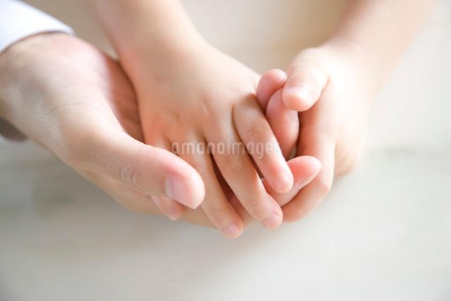 母娘の手の写真素材 [FYI03356781]