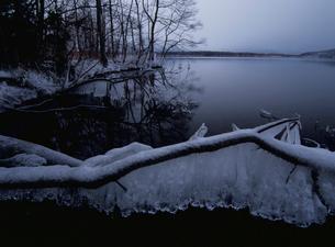 つららの凍る弟子屈湖の写真素材 [FYI03356814]