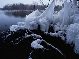 つららの凍る弟子屈湖の写真素材 [FYI03356815]