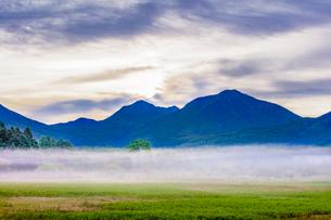 霧の小田代ヶ原とシラカバの木 貴婦人 大真名子山(右)と小真名子山(左)の写真素材 [FYI03356866]
