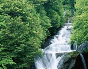 竜頭の滝 栃木県の写真素材 [FYI03357035]
