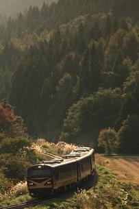 秋の山間をゆくリゾートみのり号の写真素材 [FYI03357212]