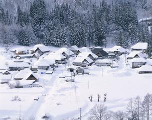 雪の前沢曲屋集落の写真素材 [FYI03357351]
