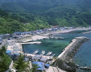 加茂漁港の写真素材 [FYI03357374]