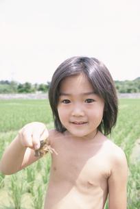 ザリガニをつかむ日本人の男の子の写真素材 [FYI03357846]