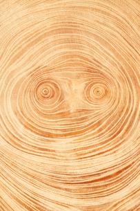 顔に見える木の年輪の写真素材 [FYI03361854]