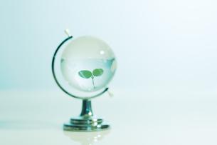 クリスタルの地球儀に浮かぶ緑の葉の写真素材 [FYI03361939]