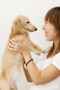 ダックス犬を抱き上げる女性の写真素材 [FYI03361941]