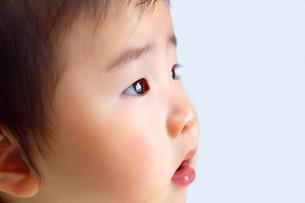 みつめている男の赤ちゃんの写真素材 [FYI03362704]