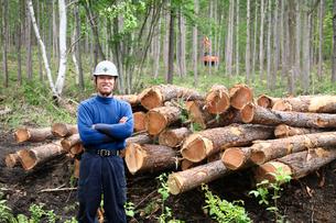 間伐材と男性の写真素材 [FYI03362711]