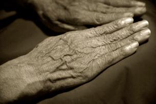 老婆の手の写真素材 [FYI03362766]