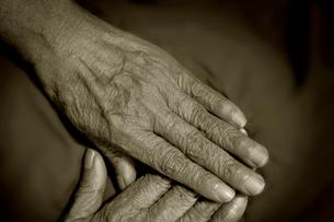 老婆の手の写真素材 [FYI03362773]