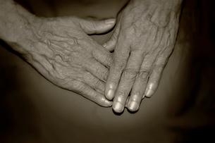 老婆の手の写真素材 [FYI03362774]
