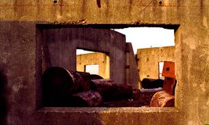 木材廃棄場の写真素材 [FYI03362804]