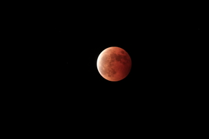 皆既月食の写真素材 [FYI03363025]