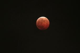 皆既月食の写真素材 [FYI03363032]