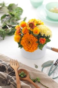 オレンジ色の花アレンジの写真素材 [FYI03363419]