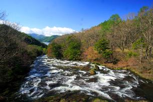新緑の竜頭ノ滝と中禅寺湖の写真素材 [FYI03363901]