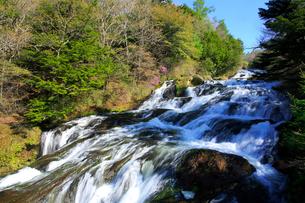 新緑の竜頭ノ滝の写真素材 [FYI03363905]