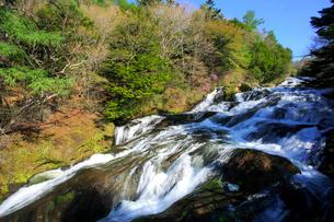 新緑の竜頭ノ滝の写真素材 [FYI03363978]