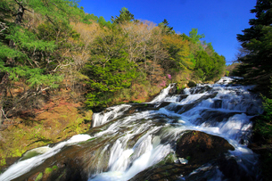 新緑の竜頭ノ滝の写真素材 [FYI03363980]