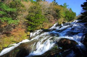 新緑の竜頭ノ滝の写真素材 [FYI03363982]