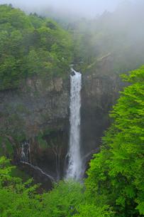 奥日光の新緑と華厳ノ滝の写真素材 [FYI03363994]
