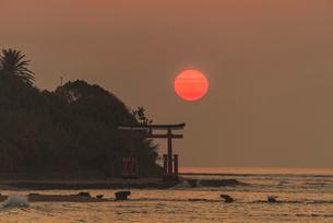 青島の日の出の写真素材 [FYI03364573]