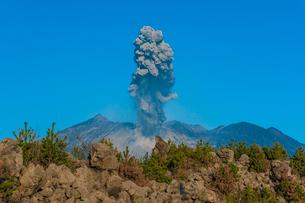 桜島の噴火の写真素材 [FYI03364576]