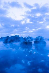 浮島神社の朝の写真素材 [FYI03364580]