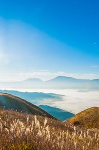阿蘇の雲海とすすきの写真素材 [FYI03364590]