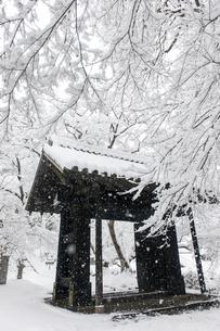 雪の秋月黒門の写真素材 [FYI03364593]