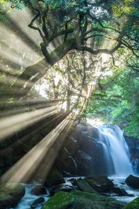 夫婦滝の光芒の写真素材 [FYI03364598]