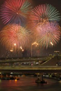 レインボーブリッジループ橋と花火の写真素材 [FYI03364703]