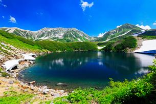 高山植物の花咲く立山室堂平よりミクリガ池に残雪と雄山の写真素材 [FYI03364726]